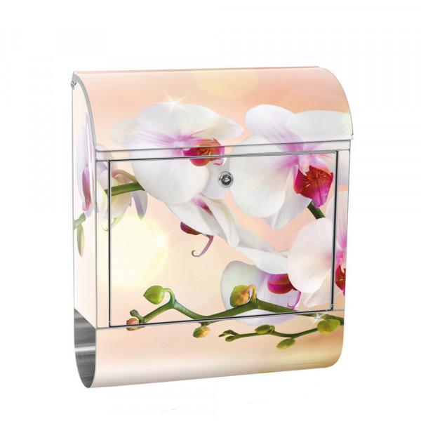 Edelstahlbriefkasten mit Zeitungsrolle & Motiv Orchidee Blume Pflanze | no. 0200