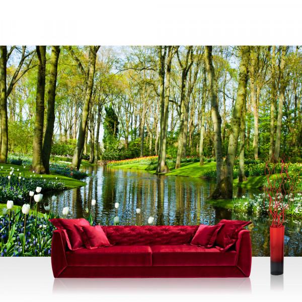 Vlies Fototapete Wald Tapete Wald Bäume Natur Frühling Wasser Sonne braun