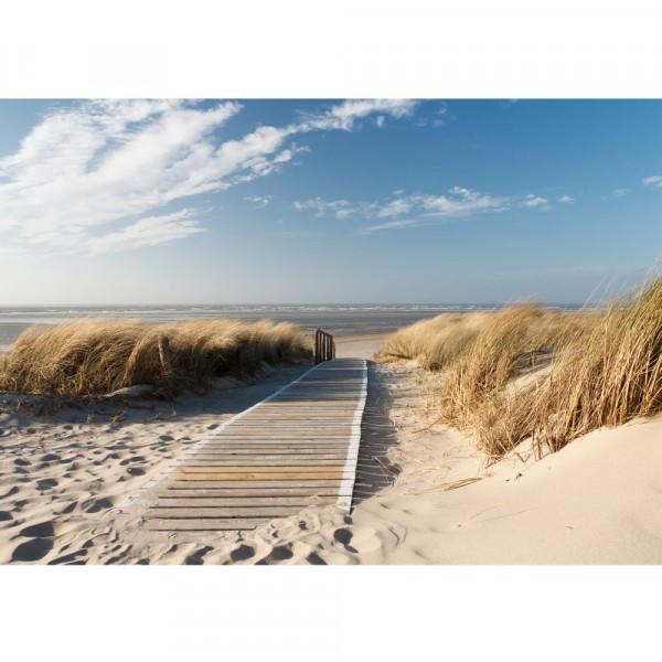 Vlies Fototapete North Sea Dunes Strand Tapete Strand Meer Nordsee Ostsee Beach Wasser Blau