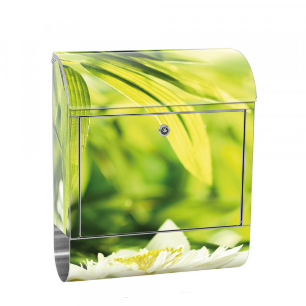 Stainless Steel Letterbox with Newspaper roll & Motif Nature water Green Forest | No. 0196