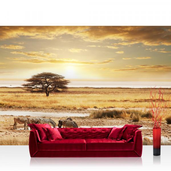 Vlies Fototapete Tiere Tapete Wüste Tiere Zebras Sonnenaufgang Natur beige