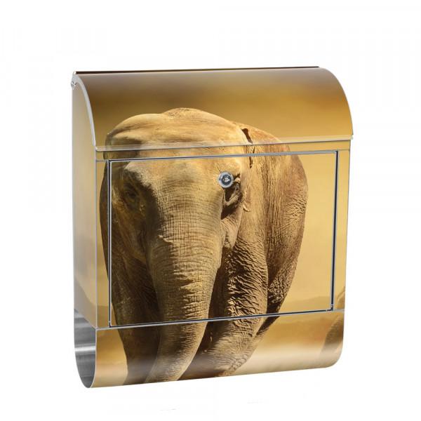 Edelstahlbriefkasten mit Zeitungsrolle & Motiv Afrika Savanne Elefant | no. 0011