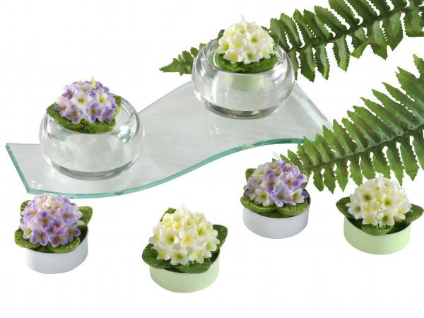 Wunderschöner Teelichtsatz Teelicht Kerzen in Form von Hortensien weiß/lila im 6er Pack Höhe 4 cm