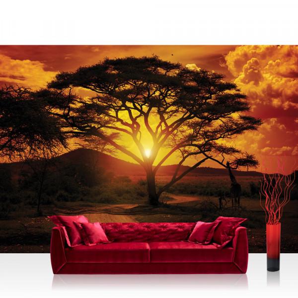 Vlies Fototapete Sonnenuntergang Tapete Sonnenuntergang Baum Weg Afrika Romantik Abenddämmerung