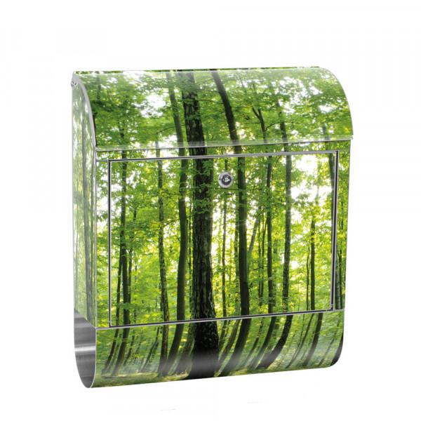 Edelstahlbriefkasten mit Zeitungsrolle & Motiv Bäume Wald Sonne Wiese | no. 0528