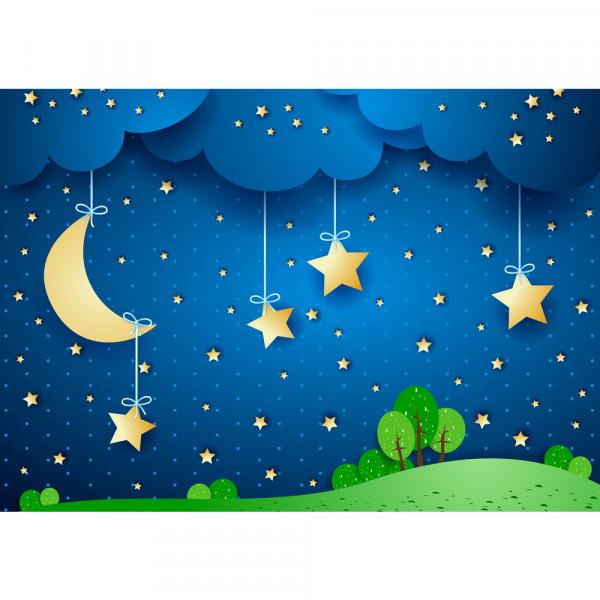 Vlies Fototapete Dreaming Night Kindertapete Tapete Sternenhimmel Stars Leuchtsterne Nachthimmel