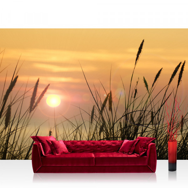 Vlies Fototapete Pflanzen Tapete Sonnenaufgang Sonne Feld Romantisch grün