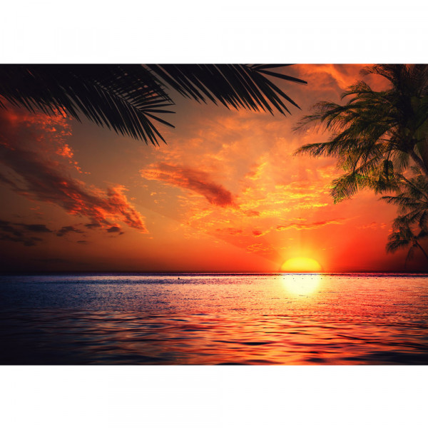Vlies Fototapete Caribbean Sundown Meer Tapete Sonnenaufgang Strand Beach Sonnenuntergang Palmen