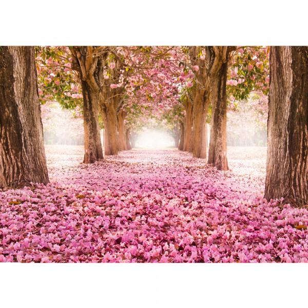 Vlies Fototapete Wald Tapete Herbstblätter Wald Bäume Baum Forest Herbst rosa