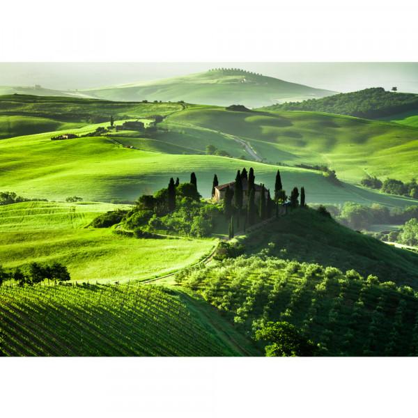 Vlies Fototapete Sunrise in Tuscany Landschaft Tapete Sonnenaufgang Italien Toskana Weinberg Weingut