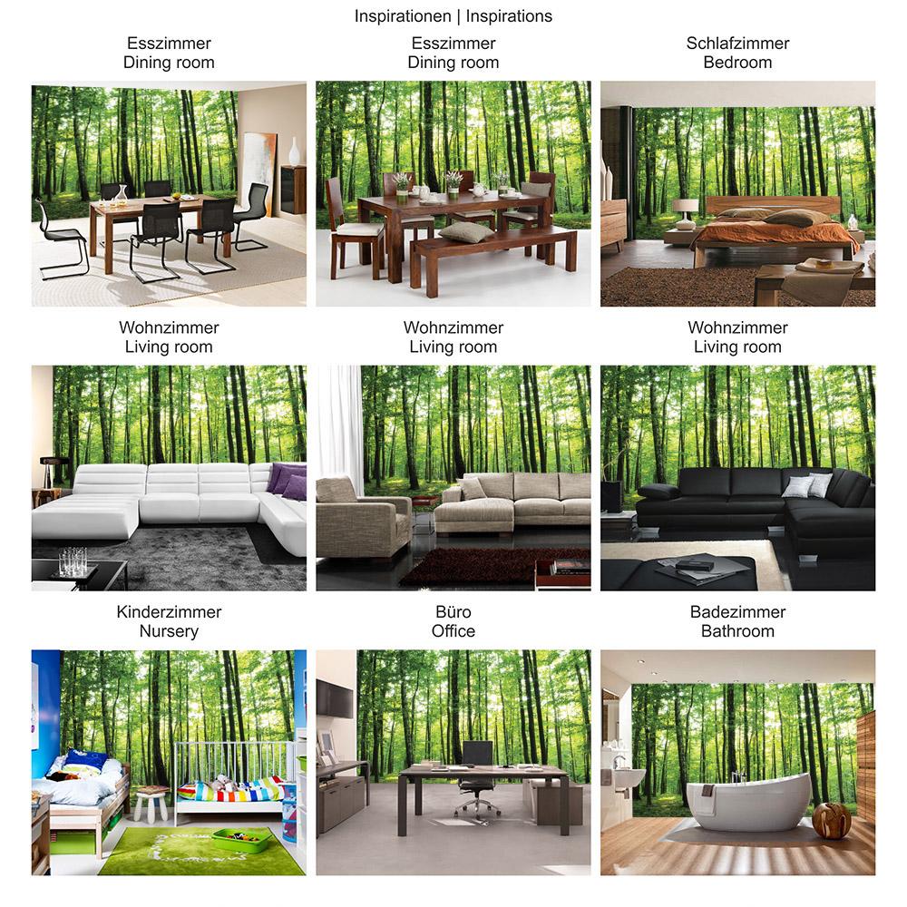 Vlies Fototapete Wald Tapete Bäume Wald Sonne Wiese grün