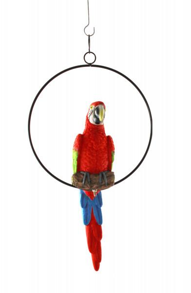 Moderne Dekofigur Garten Skulptur Papagei in Ring zum Hängen aus Poly in rot oder gelb Höhe 36 cm