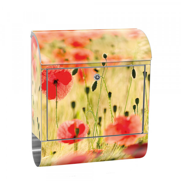Stainless Steel Letterbox with Newspaper roll & Motif Romance Poppy Field | No. 0070
