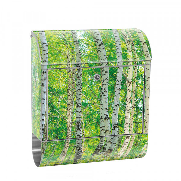 Stainless Steel Letterbox with Newspaper roll & Motif Birkenwald Birke Nature | No. 0007