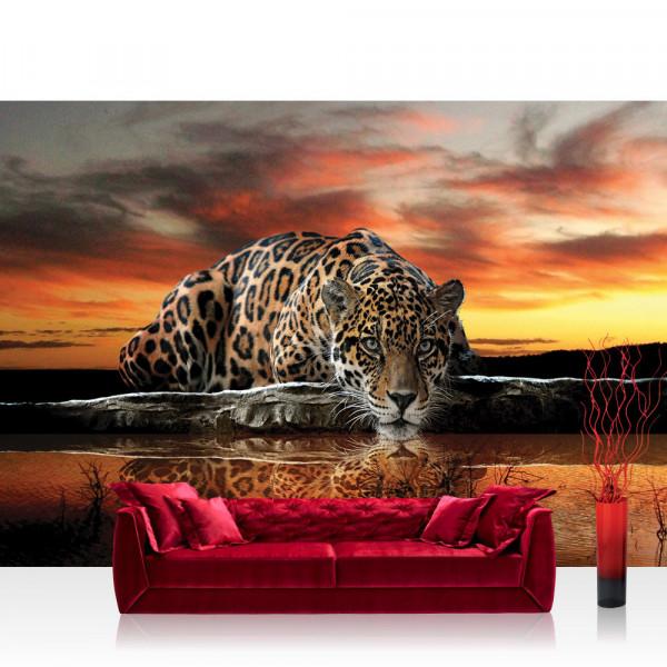 Vlies Fototapete Tiere Tapete Jaguar Sonnenuntergang Tiere orange Wasser orange