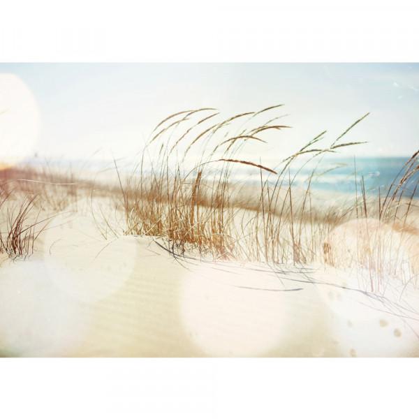 Vlies Fototapete Strand Tapete Strand Meer Beach Wasser Blau Himmel Sonne Sommer beige