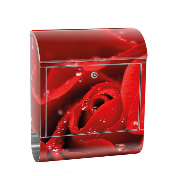 Stainless Steel Letterbox with Newspaper roll & Motif flower nature love Blossom | No.0024