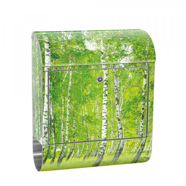 Stainless Steel Letterbox with Newspaper roll & Motif Birkenwald Gras Nature | No. 0112