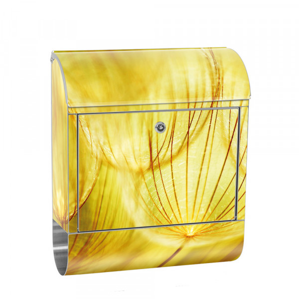 Stainless Steel Letterbox with Newspaper roll & Motif Pusteblume ochre beige | No. 0073
