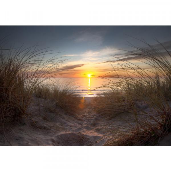 Vlies Fototapete North Sea Sunset Strand Tapete Meer Nordsee Ostsee Beach Wasser Blau Himmel Sonne