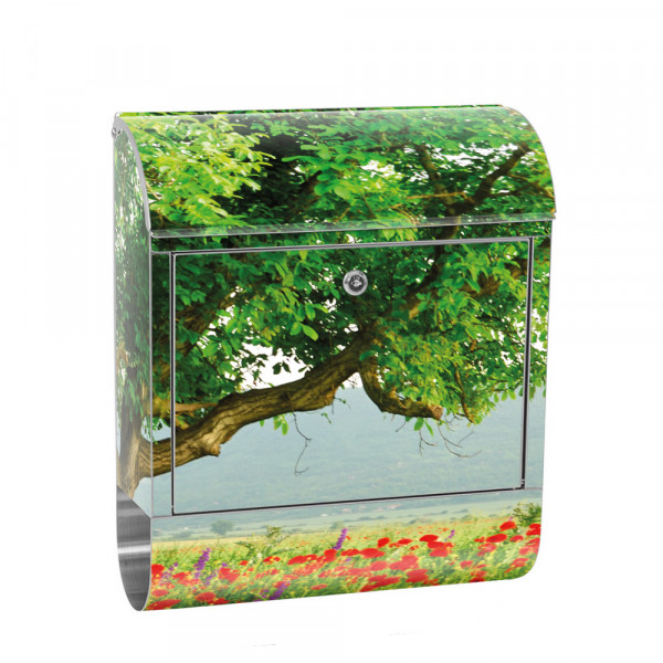 Stainless Steel Letterbox with Newspaper roll & Motif Poppy field Idyllic | No. 0090