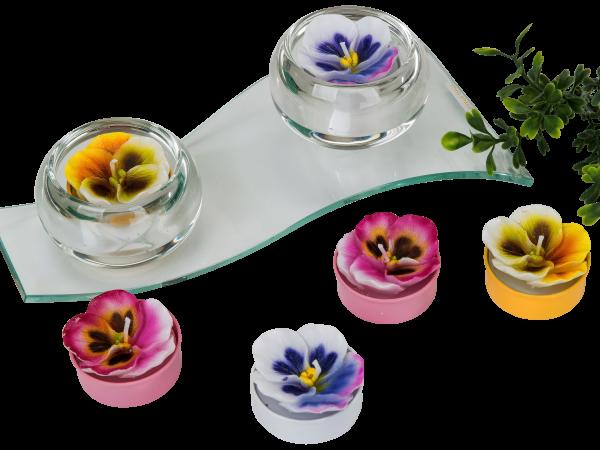 Wunderschöner Teelichtsatz Teelicht Kerzen in Form von Blumen blau rosa gelb im 6er Pack Höhe 4 cm