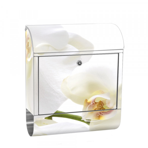 Stainless Steel Letterbox with Newspaper roll & Motif Orchid Flower plant | No. 0201