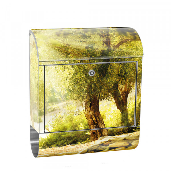 Stainless Steel Letterbox with Newspaper roll & Motif Forest sun Trees Nature | No. 0265