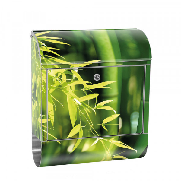 Stainless Steel Letterbox with Newspaper roll & Motif Bamboo Bamboo Forest Asia | No.0018