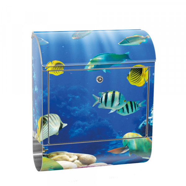 Stainless Steel Letterbox with Newspaper roll & Motif sea world sea Reef | No. 0033