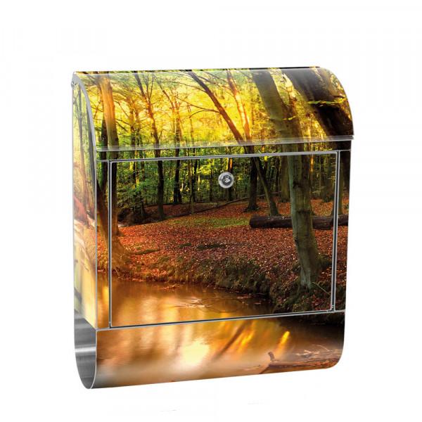 Edelstahlbriefkasten mit Zeitungsrolle & Motiv Wald Bäume Natur Sonne | no. 0252