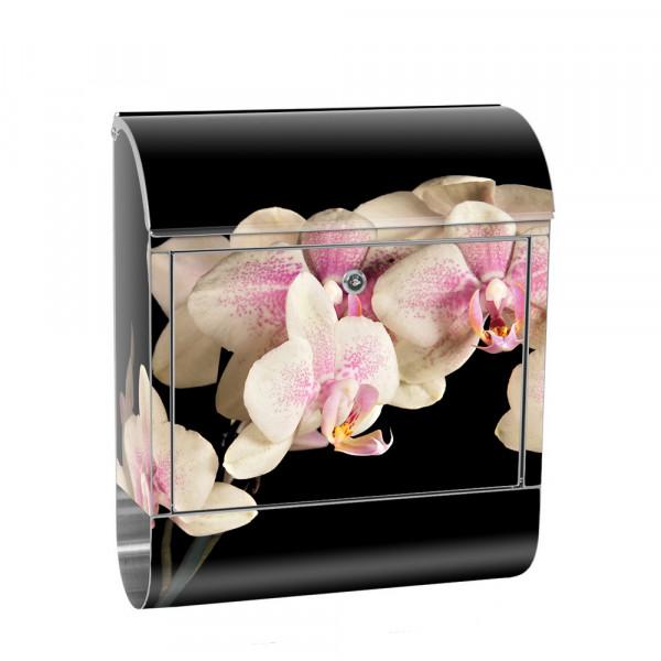 Edelstahlbriefkasten mit Zeitungsrolle & Motiv Orchidee Blumen Natur | no. 0104