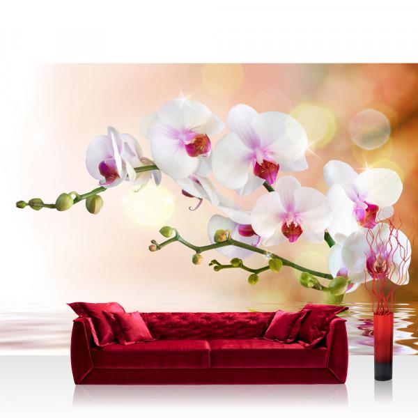 Vlies Fototapete Berge Tapete Orchidee Blumen Blumenranke Weiß Pink Natur Pflanzen Abstrakt grau