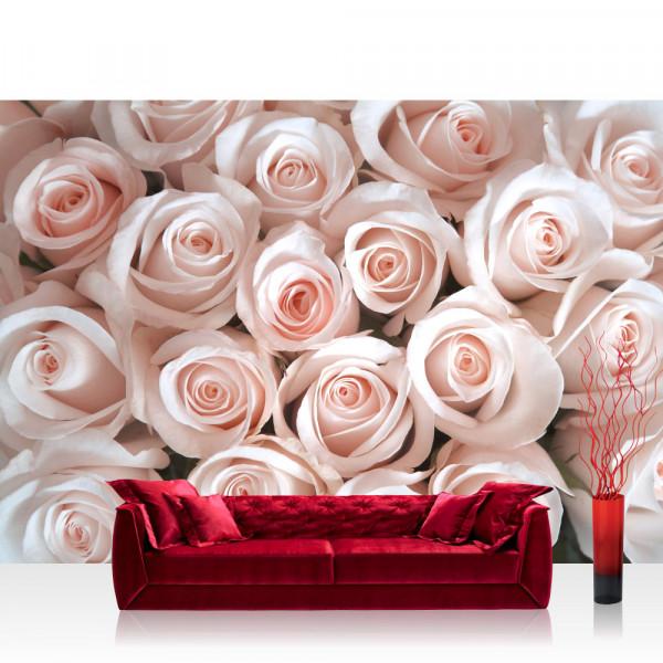 Vlies Fototapete Blumen Tapete Blumen Rose Blüten Natur Liebe Love Blüte Rosa rosa