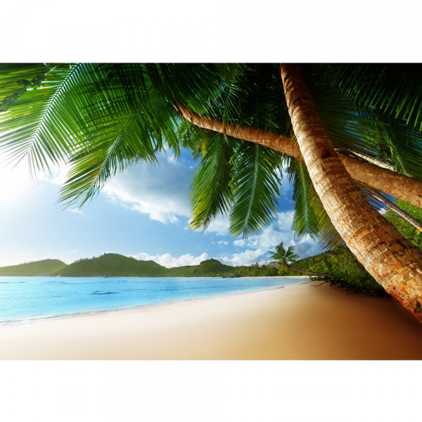 Vlies Fototapete Lonely Beach Strand Tapete Strand Meer Palmen Beach 3D Ozean Palme blau