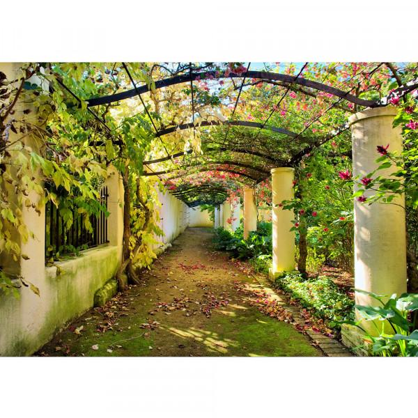 Vlies Fototapete Way in my GardenBlumen Tapete Garten Terrasse Blumenranken Blume 3D Perspektive