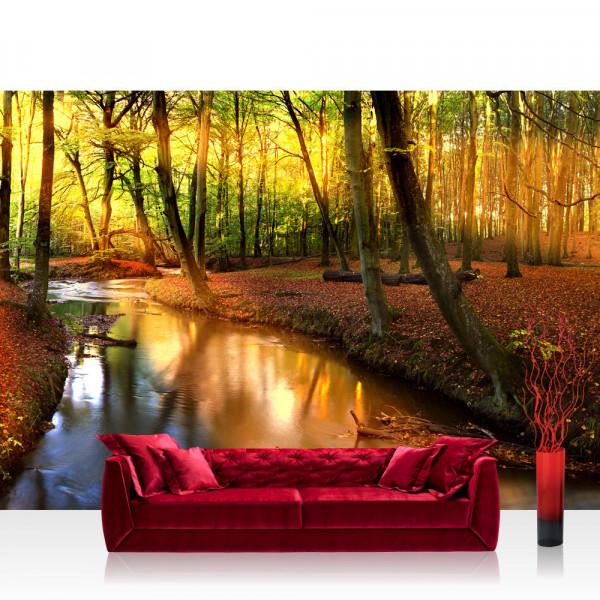 Vlies Fototapete Wald Tapete Wald Bäume Natur Sonne Wasser grau