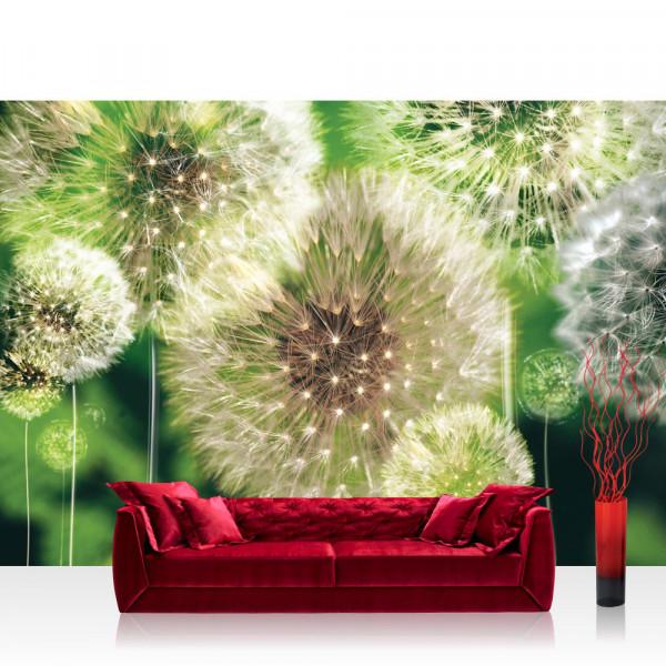 Vlies Fototapete Pflanzen Tapete Pusteblumen Wiese Grün Natur Pflanzen Blumen grün