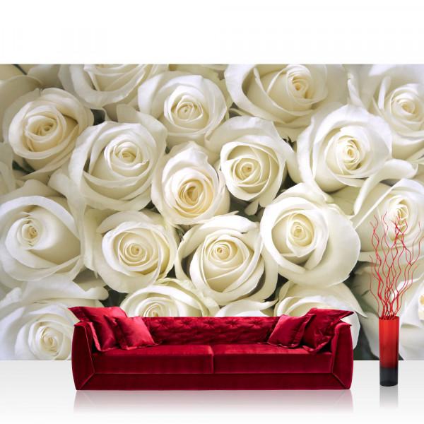 Vlies Fototapete Blumen Tapete Blumen Rose Blüten Natur Liebe Love Blüte Weiß weiß