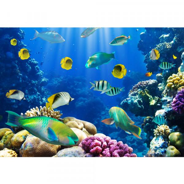 Vlies Fototapete Underwater WorldTiere Tapete Aquarium Unterwasser Meereswelt Meer Korallenriff blau