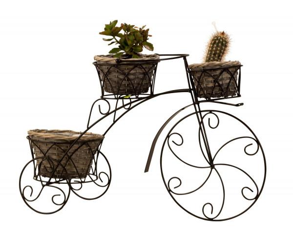 Edler Pflanzenständer Fahrrad aus Metall inklusive 3 Pflanzenkörbe schwarz Höhe 36 cm Breite 56 cm
