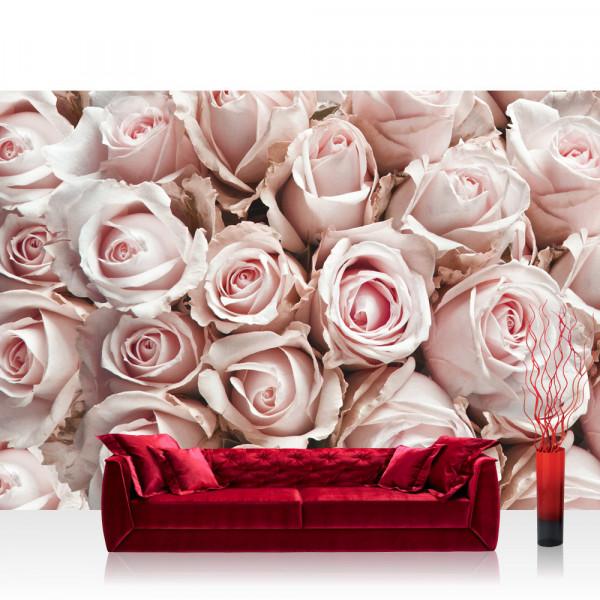 Vlies Fototapete Blumen Tapete Blumen Rose Blüten Natur Liebe Love Blüte Weiß rosa