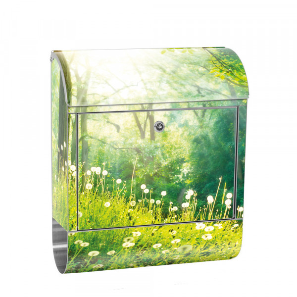 Stainless Steel Letterbox with Newspaper roll & Motif Forest trees nature green | No. 0030