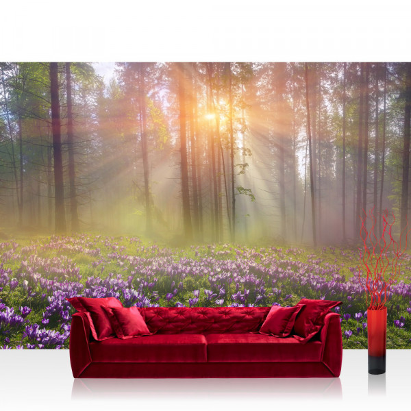 Vlies Fototapete Wald Tapete Wald Bäume Natur Baum grün Sonne türkis