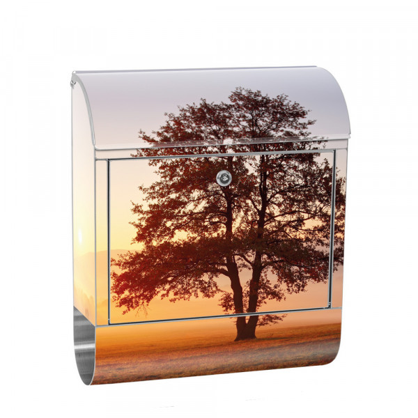 Stainless Steel Letterbox with Newspaper roll & Motif sun tree Nature Field | No. 0238
