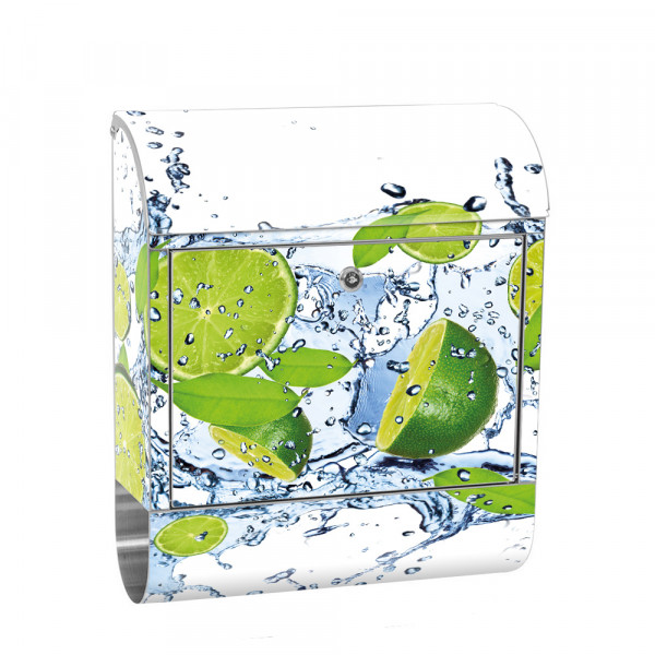 Stainless Steel Letterbox with Newspaper roll & Motif Limes fruit fruit | No. 0864