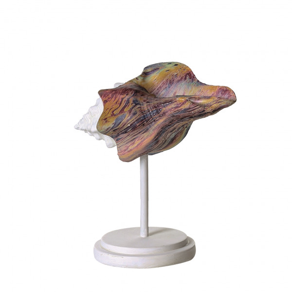 Modern sculpture decorative Figurine 19 cm Shell Colori Colourful with White Stand Height 20 cm Width