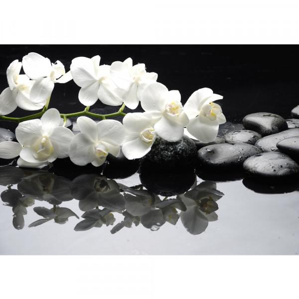 Vlies Fototapete White Orchids an Black Stones Ornamente Tapete Orchidee Blumen Blumenranke Rosa