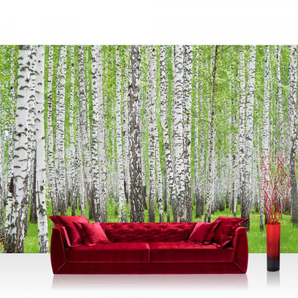 Vlies Fototapete Wald Tapete Birke Wald Bäume Natur grün weiß weiß