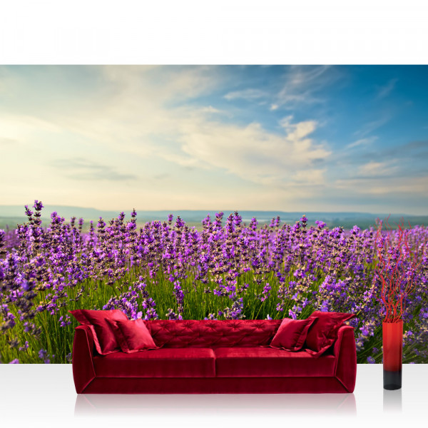 Vlies Fototapete Pflanzen Tapete Natur Feld Himmel Wolken Grün Idyll beige